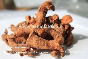 Dried pure galangal root