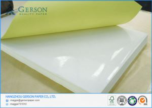 Cast Coated Water Based Adhesive Paper