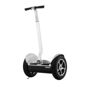 14' Wheel City Road Balance Scooter