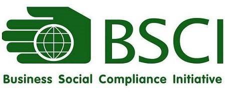 BSCI(001)(001).jpg