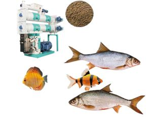 Shrimp/Fish/Prawn Feed Pellet Mill With Factory Price