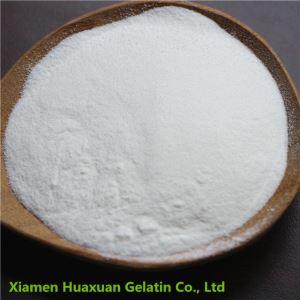 Pouch Package Of Gelatin Powder Food Grade 5grams/10grams/50grams/500grams
