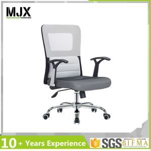 Low Back Mesh Swivel Chair with Comfort Cushion
