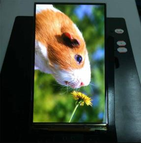 5.5 Inch OLED Display