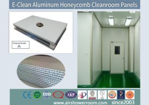 Clean Room Ceiling Systems