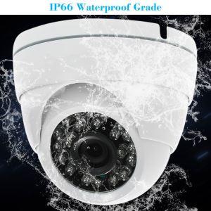 Eyeball Ip Security Camera